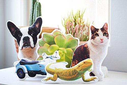 Personalized-Pet-Photo-Pillow-Mothers-Day-Gift-Pet-Memorial-Pet-Loss-Rainbow-Bridge-Cat-Pillow-Dog-Pillow-Animal-Pillow-Memory-Pillow-Pet-Portrait-Pillow-0