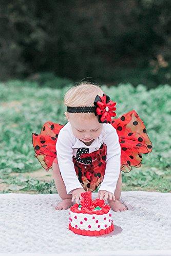 Personalized Ladybug Birthday Outfit1st TutuFirst