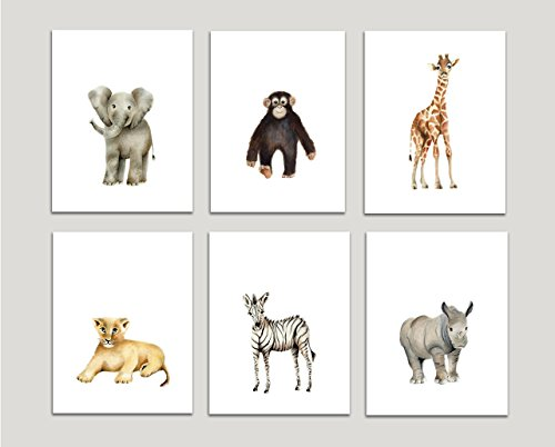 Safari-Nursery-Art-Prints-Set-of-6-Baby-Animals-Available-in-Various-Sizes-UNFRAMED-PRINTS-0
