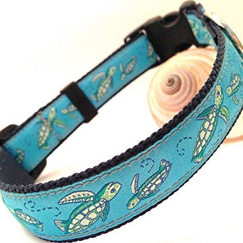 Sea-Turtle-Dog-Collar-0