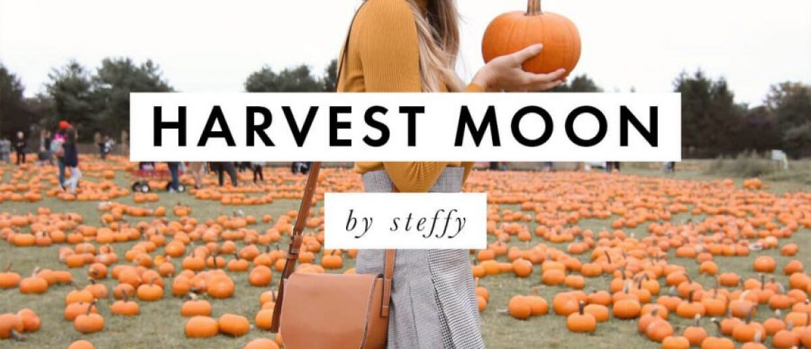 A-Color-Story-Harvest-Moon-Fall-Filters_SteffyCover