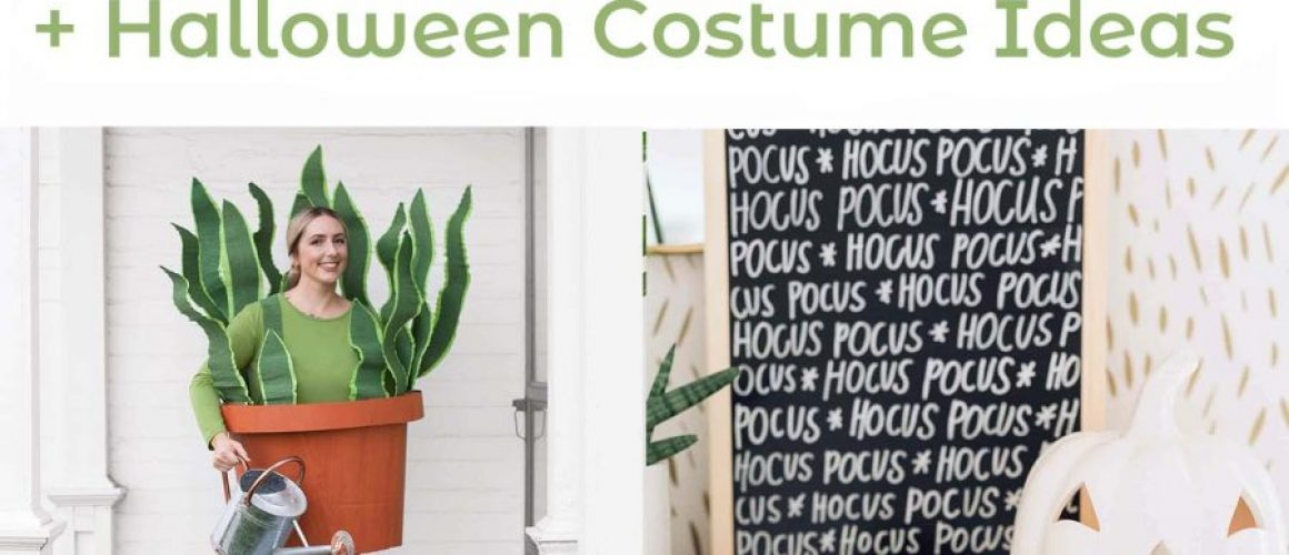 Spooky-decor-diys-and-Halloween-costumes