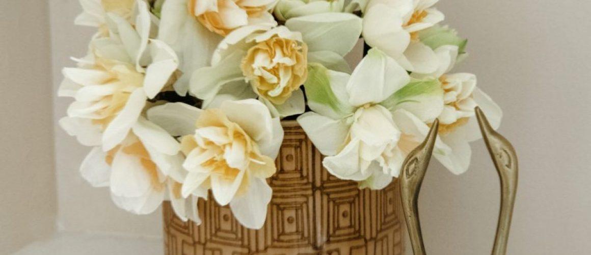 daffodil_final1-scaled